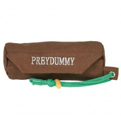 Dog Activity Preydummy, Canvas