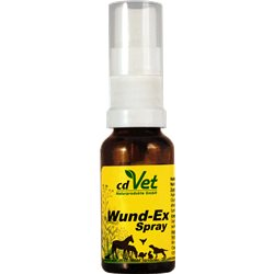 WundEx Spray 20ml