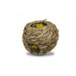 Löwenzahn-Nest