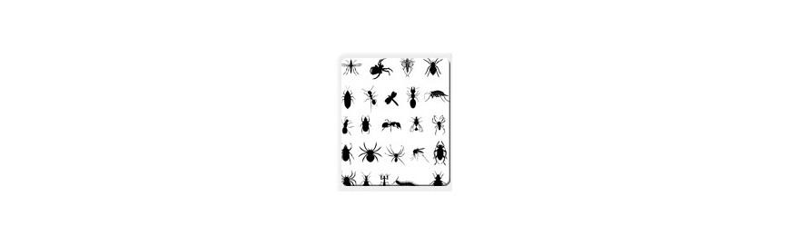 Natürliche Insekatenabwehr