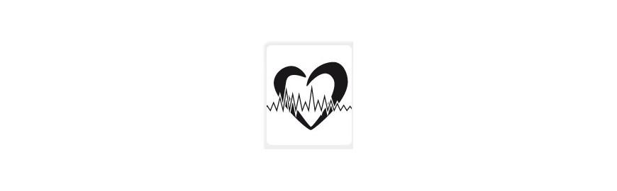 Herz/ Kreislauf